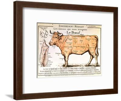 Beef: Diagram Depicting the Different Cuts of Meat--Framed Premium Giclee Print