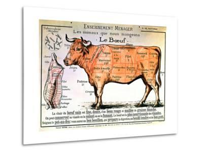 Beef: Diagram Depicting the Different Cuts of Meat--Metal Print