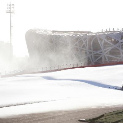 Beijing National Stadium, Beijing, China--Photographic Print
