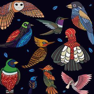 Aves, Mix Ecuador by Belen Mena