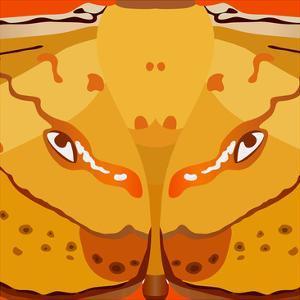 Dragon Eyes by Belen Mena