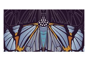 Industrial Iris by Belen Mena
