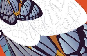 Shadowed Wing of Iris by Belen Mena