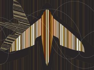 Striped Paper Planes by Belen Mena