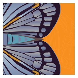 Tangerine Iris by Belen Mena