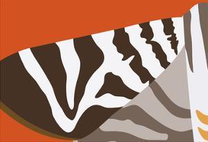 Uphill Zebra by Belen Mena