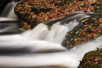 Belgium, High Fens, Nature Reserve High Fens-Eifel-Andreas Keil-Photographic Print