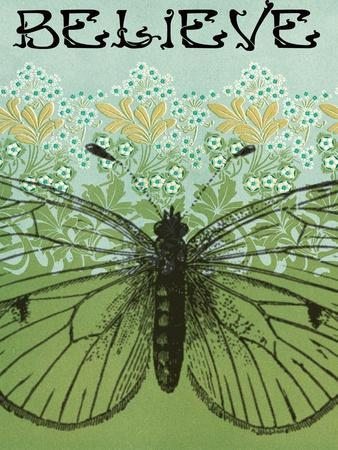 https://imgc.artprintimages.com/img/print/believe-butterfly_u-l-q1aszb30.jpg?p=0