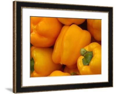 Bell Peppers--Framed Photographic Print