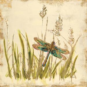 Dragonfly Meadow by Bella Dos Santos