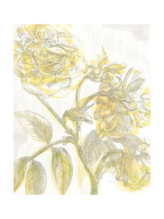 https://imgc.artprintimages.com/img/print/belle-fleur-yellow-i-crop_u-l-pwbn9l0.jpg?p=0