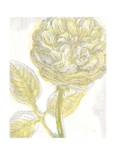 Belle Fleur Yellow III Crop-Sue Schlabach-Premium Giclee Print