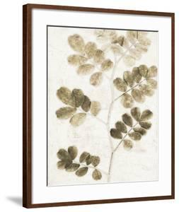Leaf Study I by Belle Poesia