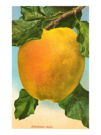 Bellflower Apple--Art Print