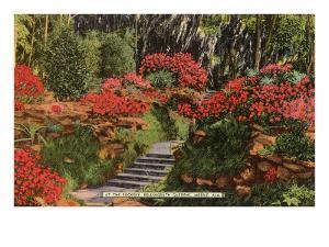 Bellingrath Gardens, Mobile, Alabama