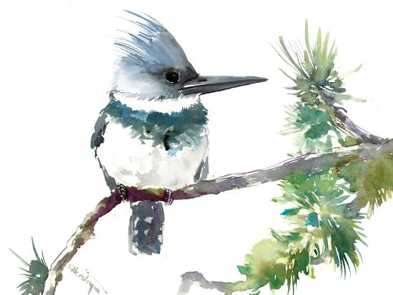 Belted Kingfisher 2-Suren Nersisyan-Art Print