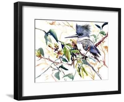 Belted Kingfisher 5-Suren Nersisyan-Framed Art Print