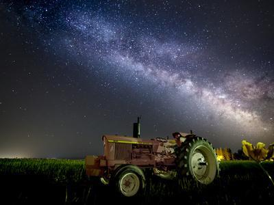 A Pink Tractor (With a Breast-Cancer Awareness Ribbon) Sits Beneath the Milky Way in a Tulip Field