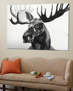Watercolor Moose by Ben Gordon