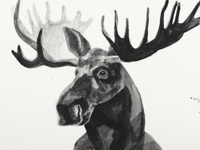 Watercolor Moose
