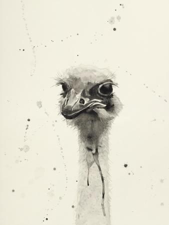 Watercolor Ostrich 2
