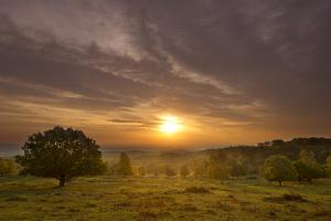 Sunrise over Beacon Hill Country Park, the National Forest, Leicestershire, UK, October by Ben Hall