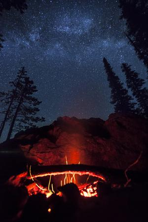 A Fire Burns under a Canopy of Stars and Evergreens in the Seven Devil Mountains in Central Idaho