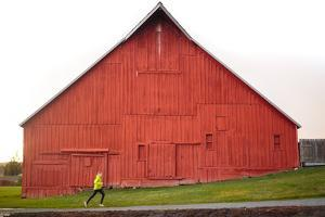 Male Runner Runs Along A Gravel Trail In Front Of Bright Red Barn In UI Arboretum In Moscow, Idaho by Ben Herndon