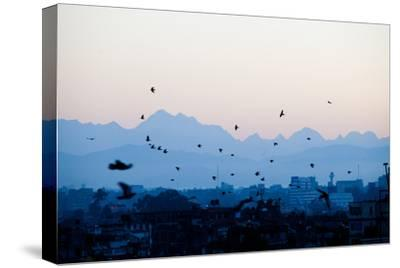 Kathmandu, Nepal: Birds Take Flight at Sunrise with the Himal Ganesh as a Backdrop