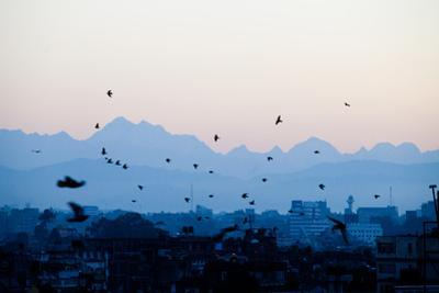 Kathmandu, Nepal: Birds Take Flight at Sunrise with the Himal Ganesh as a Backdrop