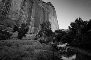The Canyon De Chelly Anasazi Ruins and a Horse Crossing a Stream by Ben Horton
