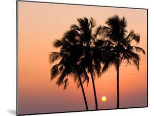 Agonda Beach, Goa, India, Asia by Ben Pipe