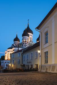 Exterior of Russian Orthodox Alexander Nevsky Cathedral at night, Toompea, Old Town, UNESCO World H by Ben Pipe