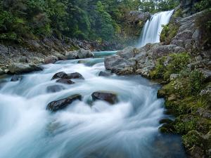 Tawhai Falls, Tongariro National Park, UNESCO World Heritage Site, North Island, New Zealand, Pacif by Ben Pipe