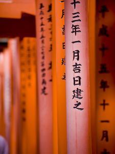 Vermillion Torii Gates, Fushimi-Inari Taisha, Kyoto, Japan, Asia by Ben Pipe