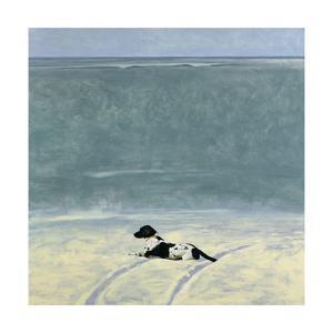 Beach Dog II, 1990 by Ben Schonzeit