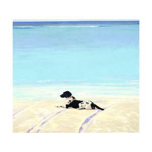 Beach Dog III, 1991 by Ben Schonzeit