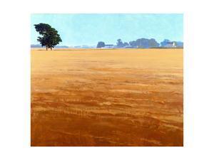 David Whites Lane, 1985 by Ben Schonzeit