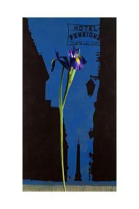 Pensione Iris, 1995 by Ben Schonzeit