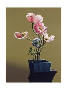 Poppies, 1992 by Ben Schonzeit