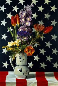 Stars & Stripes, 1998 by Ben Schonzeit