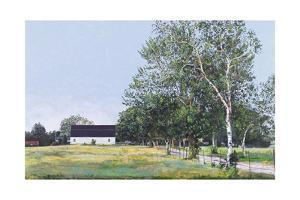 The White Barn, 1987 by Ben Schonzeit