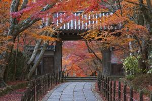 A Telephoto View Shows a Traditional Wooden Gate Roofed with Kawara Ceramic Tiles at Komyo-Ji by Ben Simmons