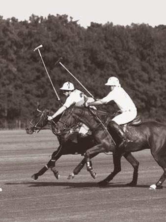 Polo In The Park III