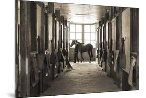 Stable Stalls by Ben Wood