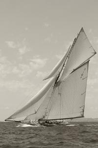 Swift Sailboat by Ben Wood