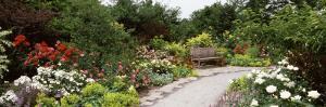 Bench in a Garden, Olbrich Botanical Gardens, Madison, Wisconsin, USA