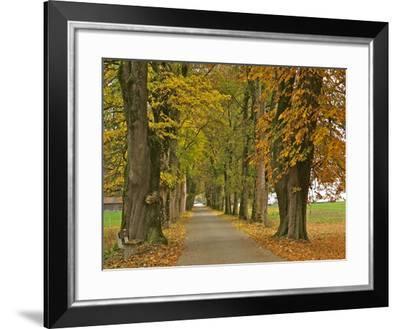Benediktbeuern, Autumn-Uta Horst-Framed Photographic Print