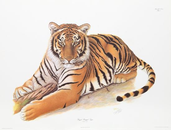 Bengal Tiger-Sean Bollar-Collectable Print