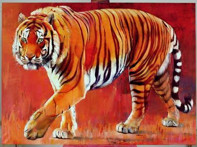 Bengal Tiger-Mark Adlington-Giclee Print